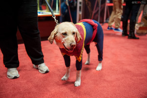 NYCC2013_016